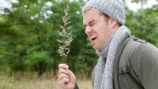 Zaczyna się czas jesiennych alergii