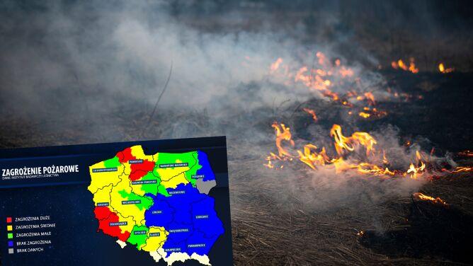 Wzrosło ryzyko pożarów w części polskich lasów