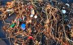 Wzrasta ilość śmieci w oceanach