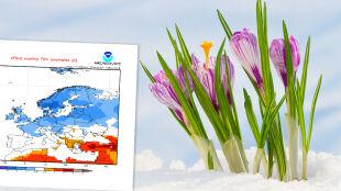Amerykańska prognoza na marzec dla Europy: może być chłodniej niż zazwyczaj